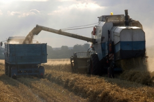 wheat_harvester_header_driver (5)